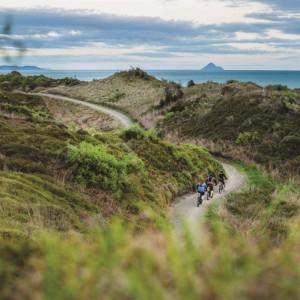 Motu Trails Cycleway